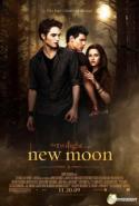Flirting with Danger: <I>New Moon</i>'s Victim Stereotype