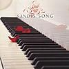 Sandi's Song