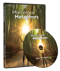 Marvelous Metaphors DVD Study Set