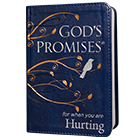 God's Promises for when You are Hurting - book