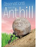 Observations from an Anthill