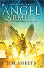 Angel Armies: Releasing the Warriors of Heaven (Book & 4-CD Set)