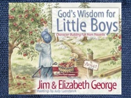 God's Wisdom for Little Boys Book
