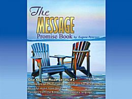 The Message Promise Book  Series #2 CD