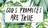 God's Promises Are True