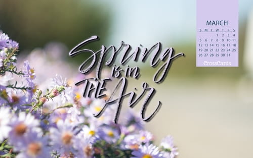 March 2017 - Spring is in the Air