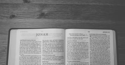 How is the Theme of Salvation Seen in the Book of Jonah?