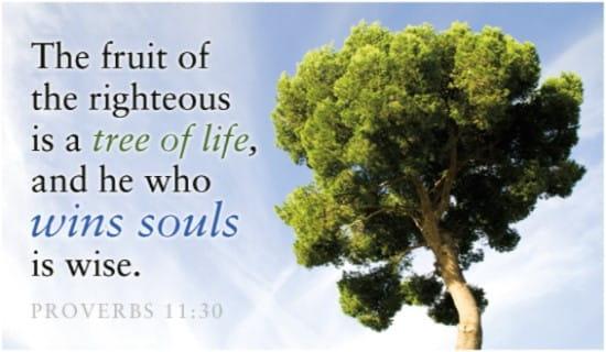 Win Souls