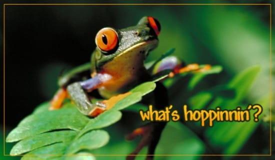 What's Hoppinnin?
