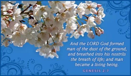 Genesis 2:7