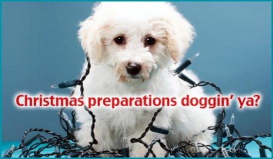 Christmas Doggin' Ya