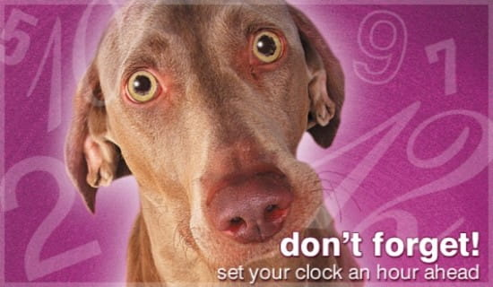 Don't Forget - Clocks Ahead ecard, online card