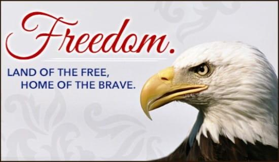 Freedom ecard, online card