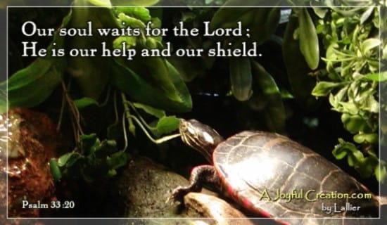 Psalms 33:20