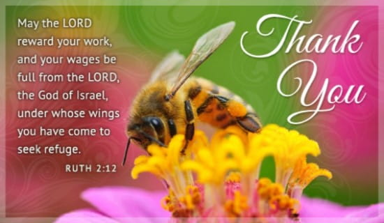 Thank You Bee