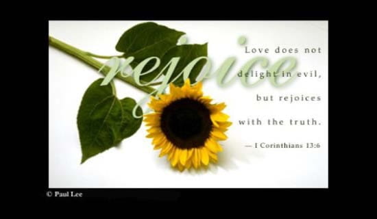 Love Rejoices
