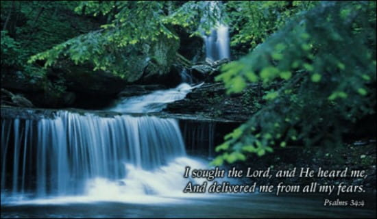 Sought The Lord