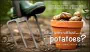 Potato Day (8/19)