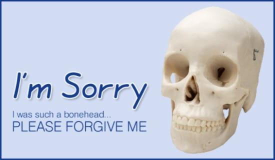 Bonehead - I'm Sorry