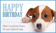 Miss Your Birthday
