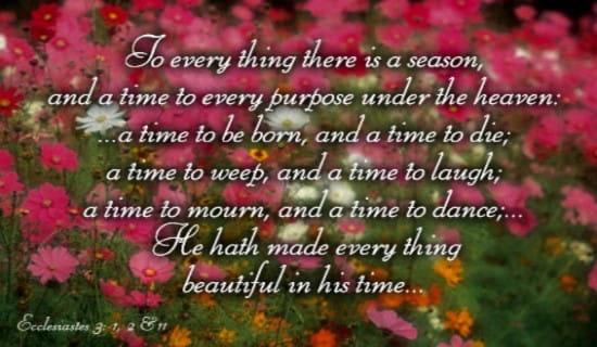 Every Season