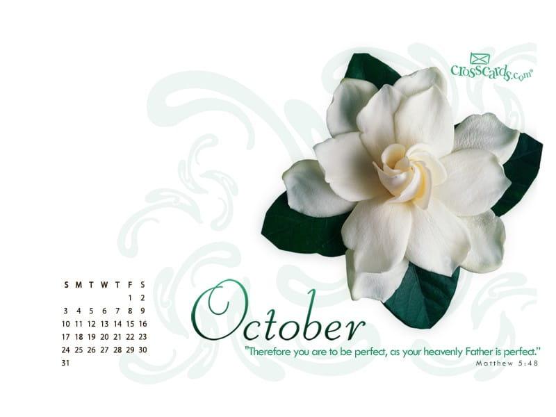 October 2010 - Matthew 5:8
