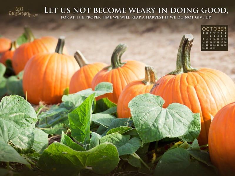 Oct 2012 - Do Good