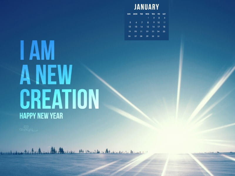 Jan 2014 - New Creation