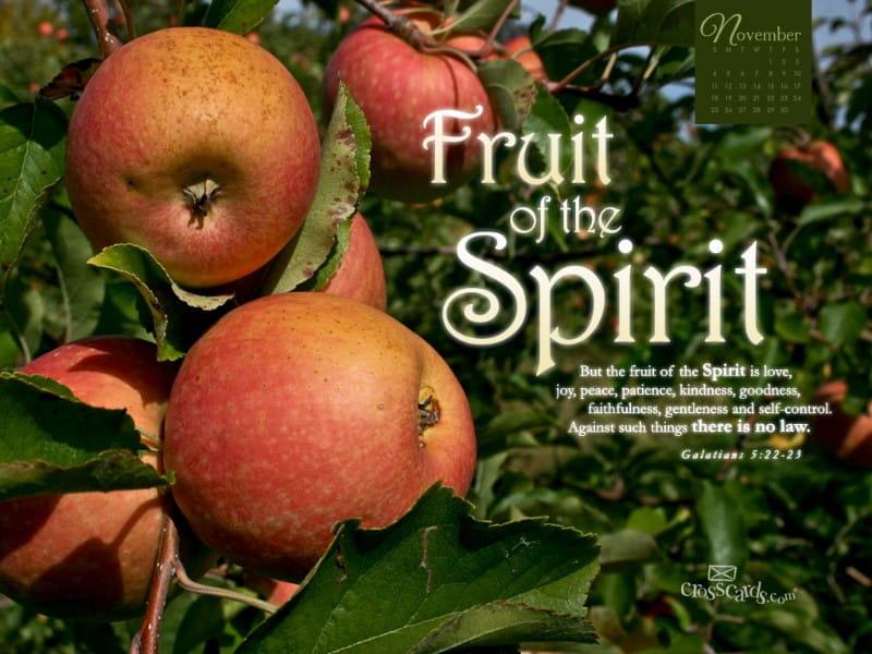 Nov 2012 - Fruit