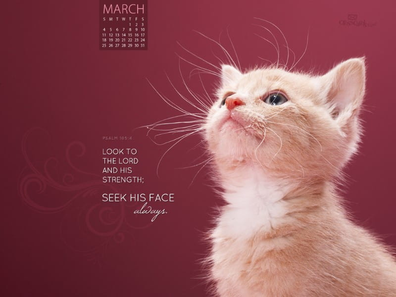March 2012 - Seek His Face