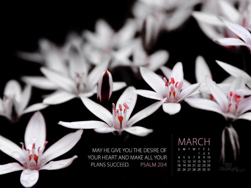 March 2012 - Ps. 20:4