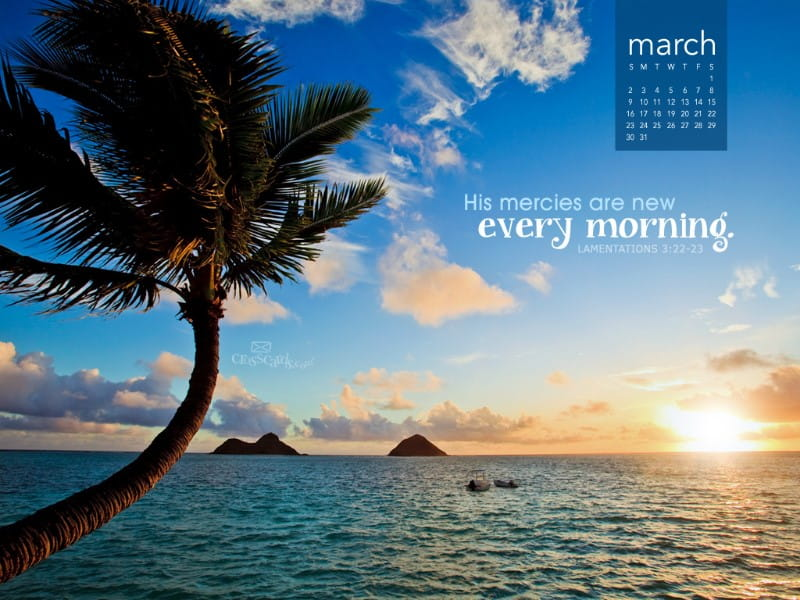 March 2014 - Mercies Are New