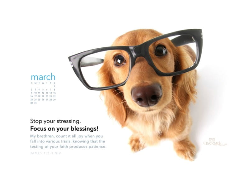 March 2014 - Focus on Blessings