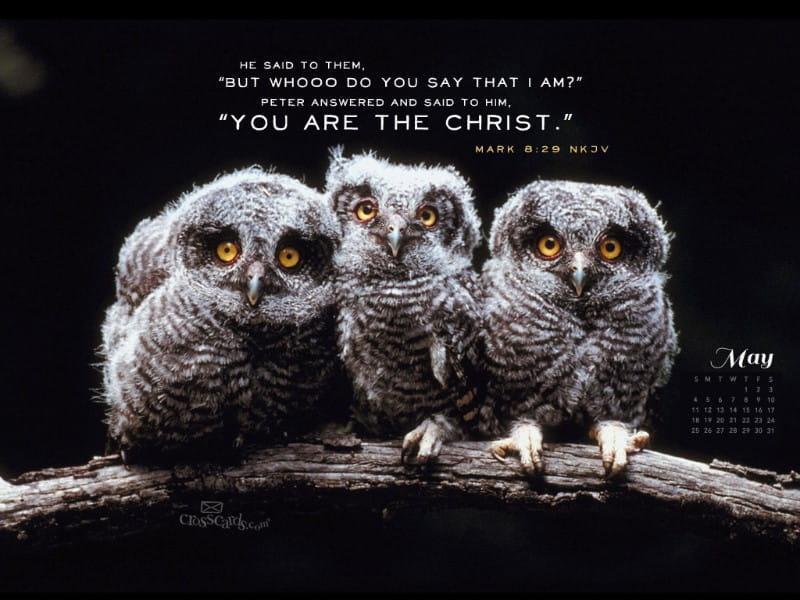 May 2014 - Mark 8:29