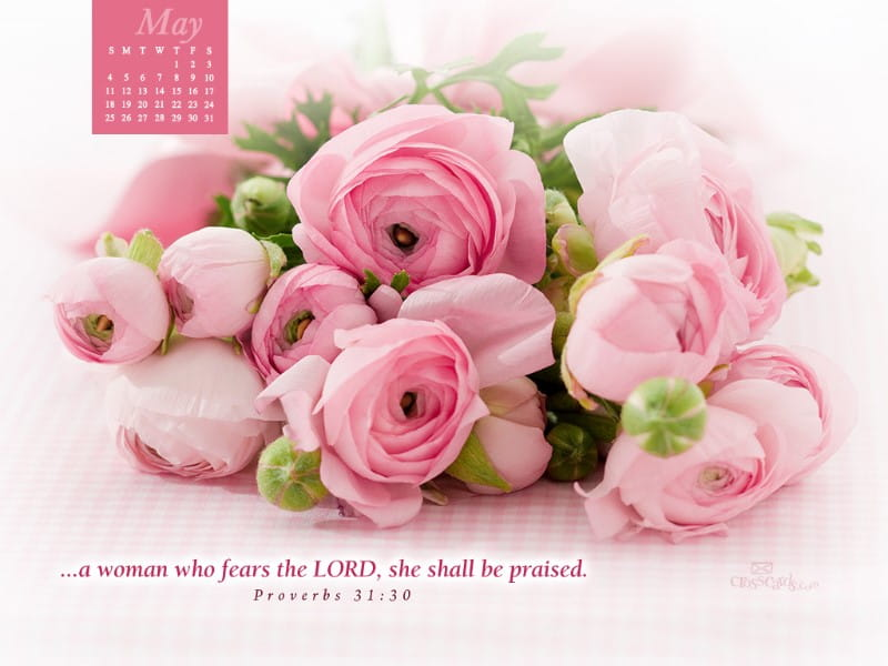 May 2014 - Proverbs 31:30