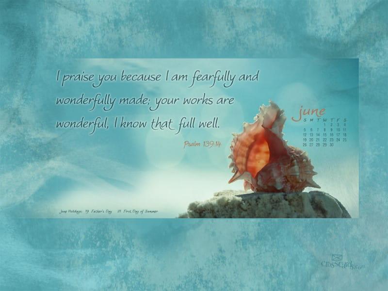 June 2011 - Psalm 139:14