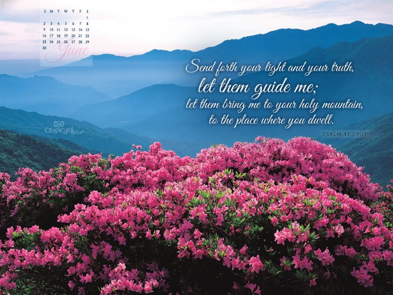 June 2013 - Psalm 43:3 NIV