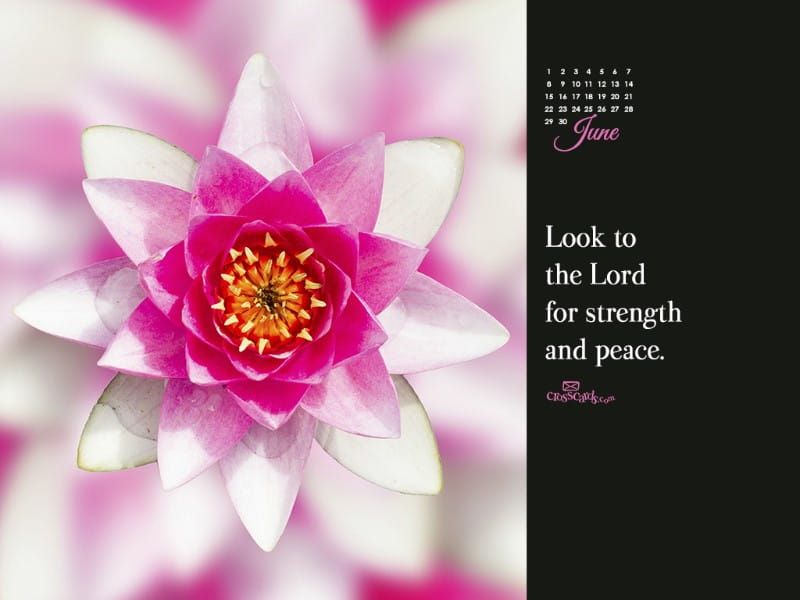 June 2014 - Strength and Peace