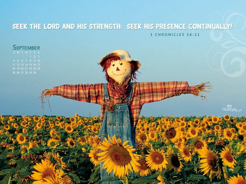 September 2011 - Scarecrow