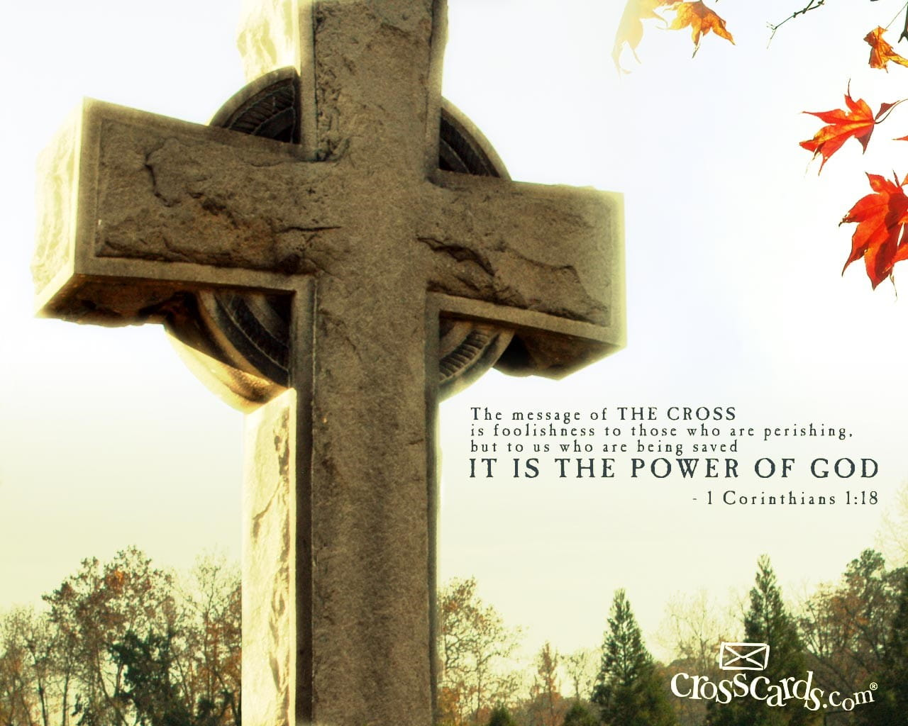 cross and the bible - photo #40