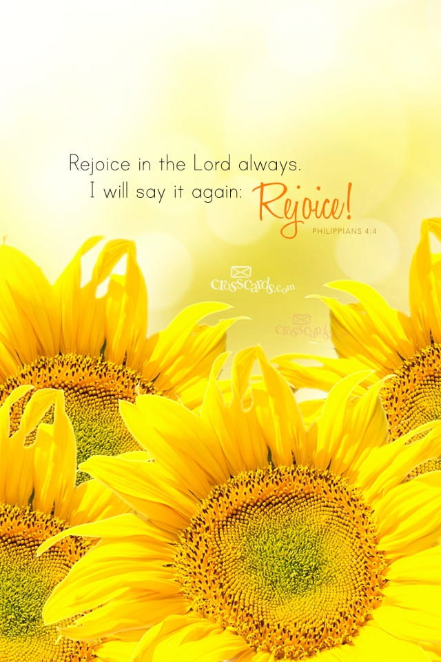 Rejoice In The Lord Bible Verses And Scripture Wallpaper For Phone Or Computer