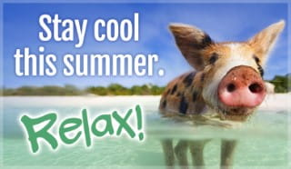 Stay Cool - Relax
