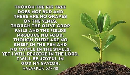 Habakkuk 3:17-18 eCard - Free Facebook eCards Greeting ...