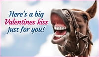 Valentine's Kiss For You