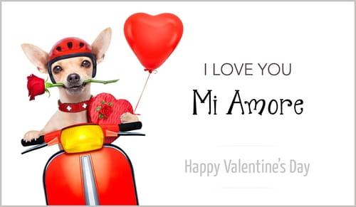 Love You - Mi Amore