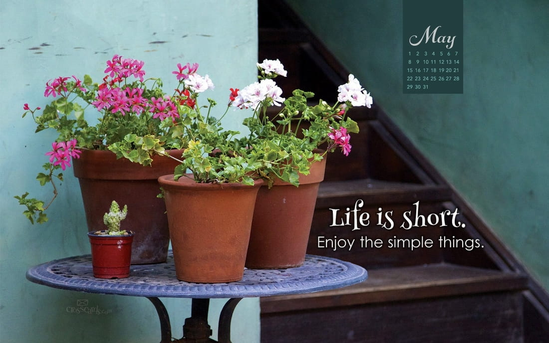 May 2016 - Life Is Short
