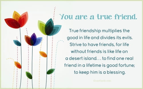 You are a true friend.
