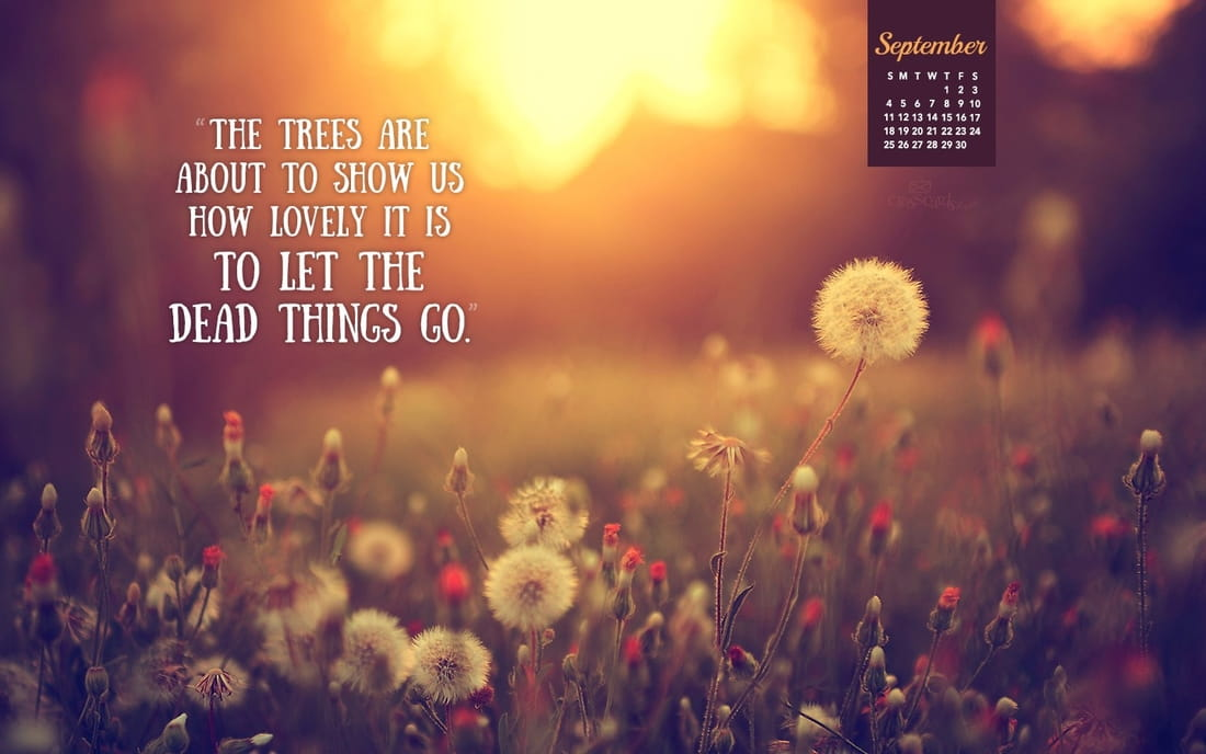 Free Calendar Wallpaper September : September let things go desktop calendar free