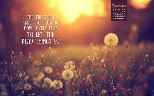 September 2016 - Let Things Go