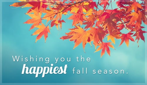Wishing you the happiest autumn season